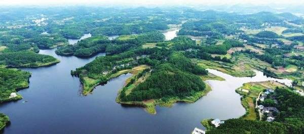 青龙湖生态园名木古树保活、复壮案例 上期